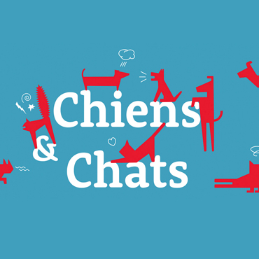 Chiens Chats